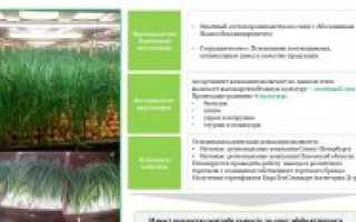 Инвестпроекты в сельском хозяйстве