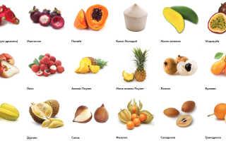 Экзотические фрукты как бизнес