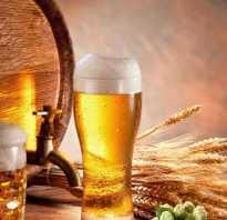 Открыть магазин разливного пива отзывы