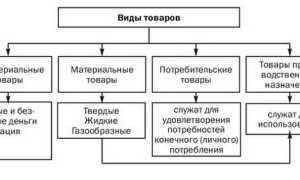 Анализ качества и потребительские свойства товара