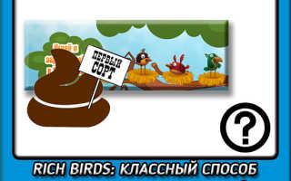 Rich birds отзывы о выводе