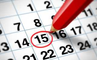 Как узнать дату открытия ип
