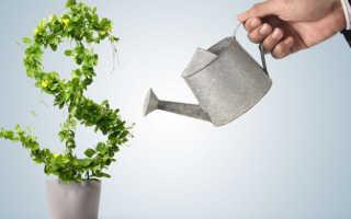 Цели и направления инвестирования