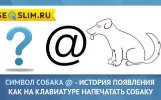 История создания собаки знака