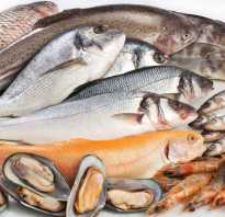 Бизнес план продажа рыбы