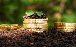 Предложение инвесторов в сельское хозяйство
