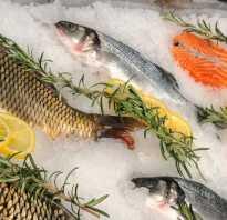 Бизнес план рыбного магазина