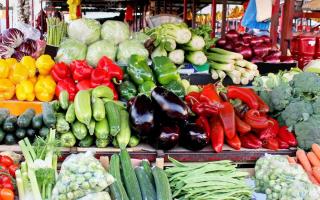 Продажа овощей и фруктов бизнес форум