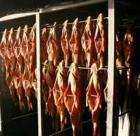 Оборудование для копчения рыбы для бизнеса